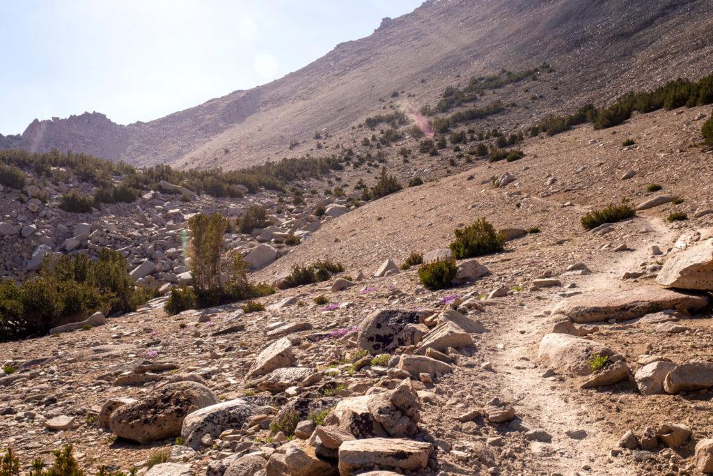 Aufstieg zum Kearsarge Pass