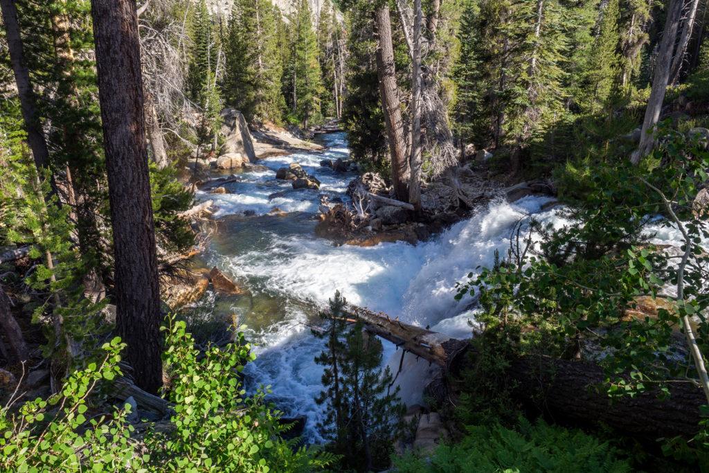 Der Middle Fork Kings River rauscht vorbei