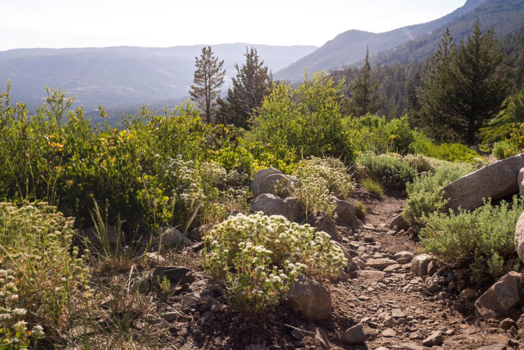 Der Aufstieg zum Senger Creek