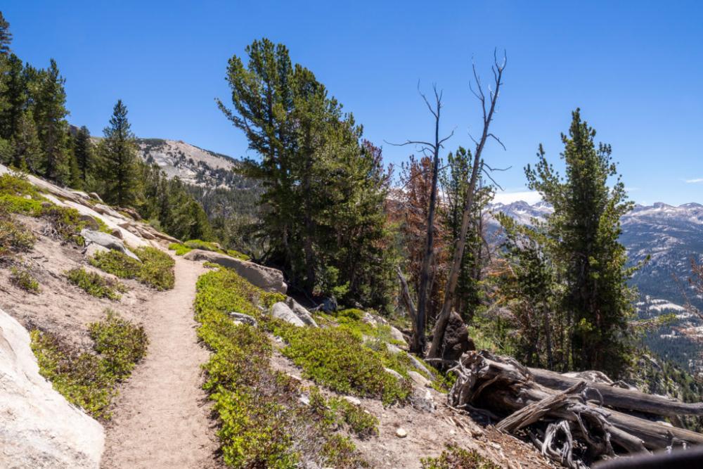 Der Trail führt malerisch am Hang entlang