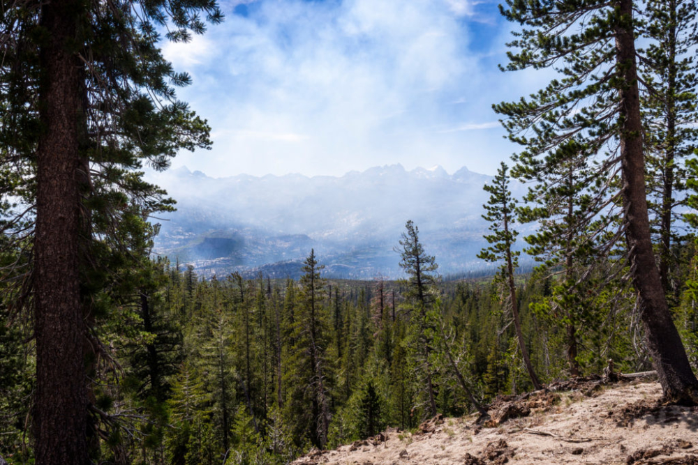 Waldbrand-Rauch vor Mammoth